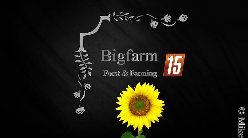 Мод карты BigFarm V 1.2 Farming Simulator 2015