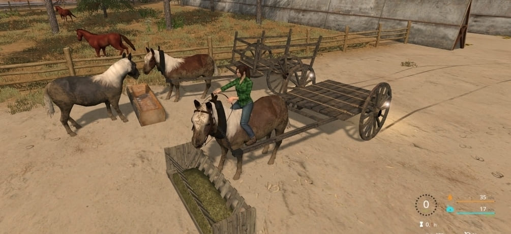 Мод пони Rideable Pony v1.0 Farming Simulator 17