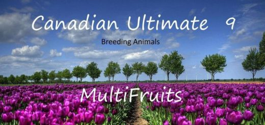 Мод карта CANADIAN ULTIMATE V9.1 Farming Simulator 17